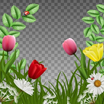 Fantasy beautiful green floral background square frame. with green loan grass and pink tulips with camomile and butterflies and ladybugs.