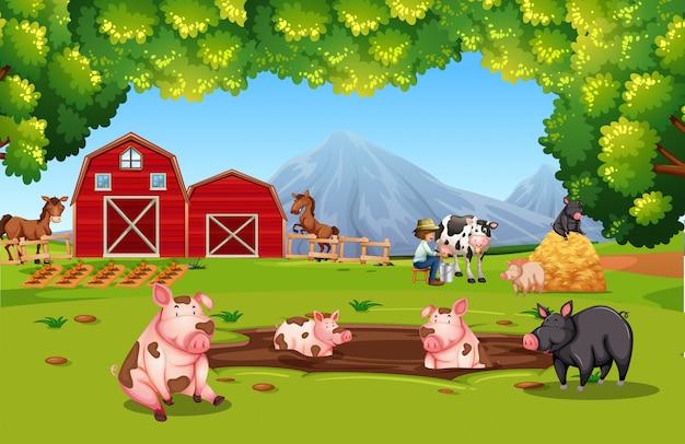 농지에서 농장 동물