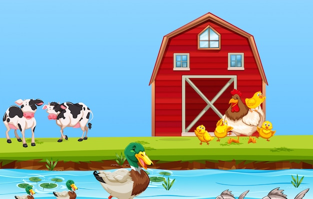 Farm animal in nature