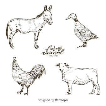 農場の動物コレクションの手描きスタイル