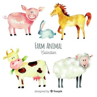수채화 스타일의 농장 동물 모음