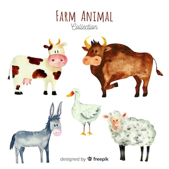 Farm animals collection in watercolor style