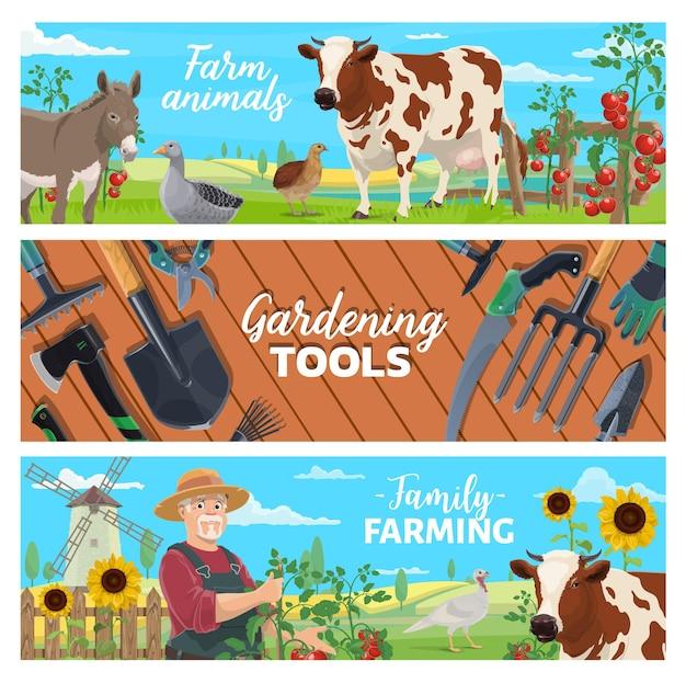 농장 동물, 가족 농업 및 원예 도구 배너. 농장 가금류 및 가축, 야채 수확. 농부 성장 토마토, 젖소 및 당나귀, 거위, 칠면조 및 메추라기, 필드 풍경 벡터