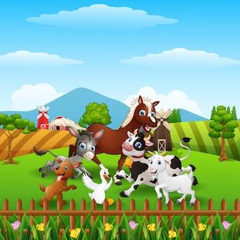 ケージの前で幸せな家畜