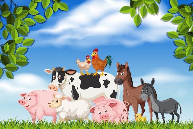 Farm animals in nature scene