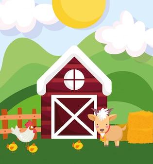 農場の動物ramオンドリおよび鶏の納屋フェンス干し草漫画