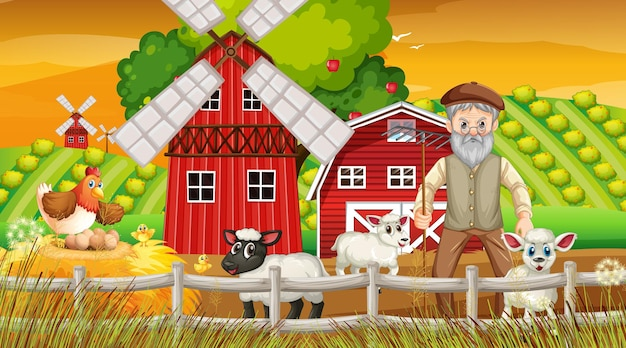 늙은 농부 남자와 농장 동물과 일몰 시간 현장에서 농장