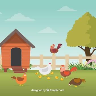 Sfondo della fattoria con i polli
