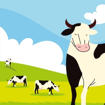 Ферма коров в поле