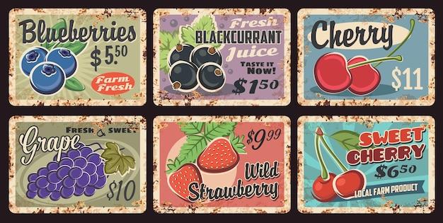 농장 신선한 베리 녹슨 금속 접시입니다. 블루베리, 블랙커런트, 달콤한 체리, 포도, 딸기