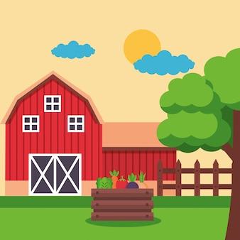 Ферма свежий мультфильм