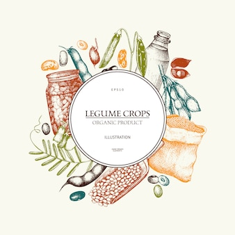 Farm fresh and organic plants template. hand sketched cereal and legume plants wreath  in color