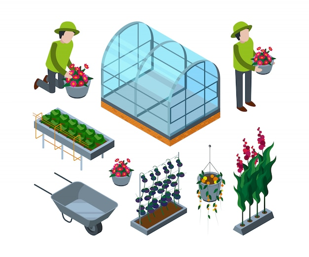 Farm greenhouse isometric. agricultural wheelbarrow glasshouses for tomato horticulture   3d pictures