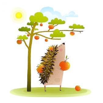 Farm hedgehog near apple tree harvesting