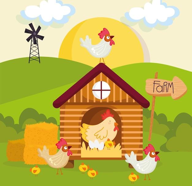 Ферма курятник и птицеводство