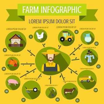 Farm infographic in flat style for any design