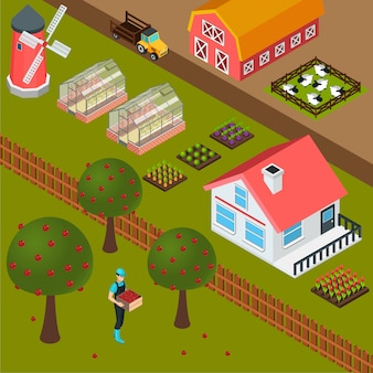 Farm isometric background