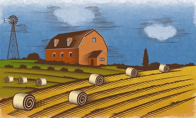 Farm landscape. engraved color vector illustration.