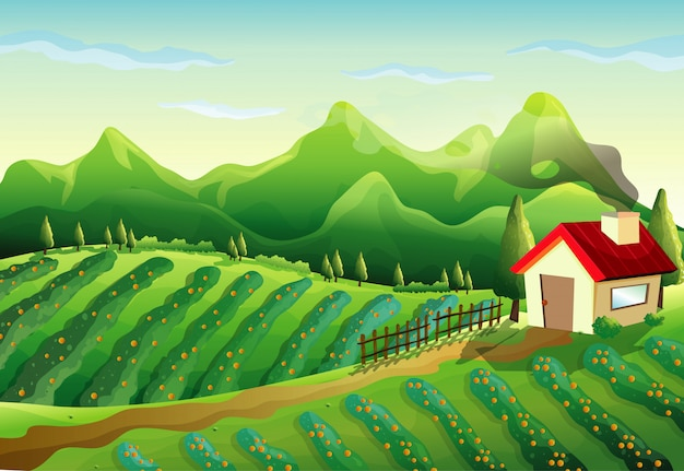 Farm in nature scene with little house and green farm