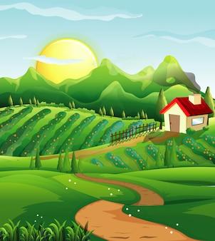 家のある自然の中の農場のシーン