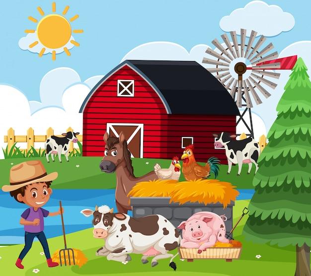 Ферма сцена с мальчиком и многими животными на ферме
