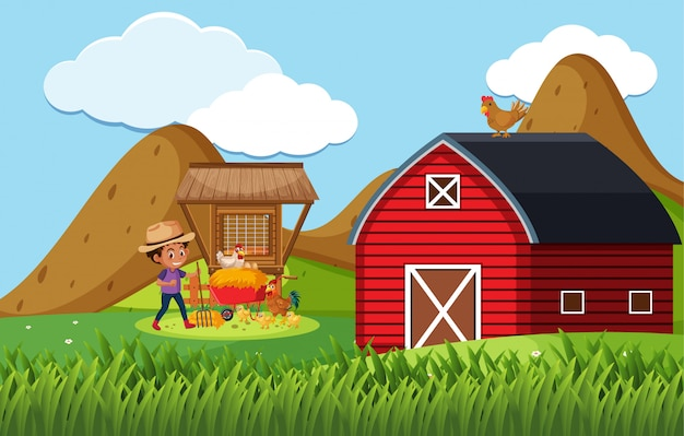 Farm scene with boy feeding chickens on the farm