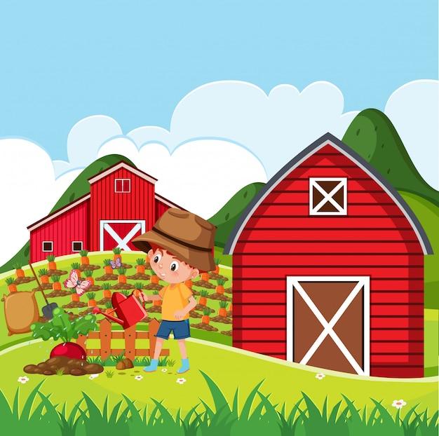 少年が農場で植物に水をまくと農場のシーン