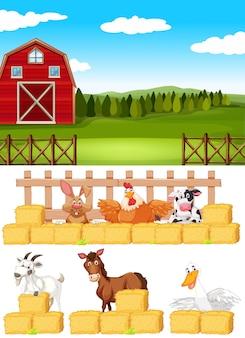Farm scene with farm animals on the farm