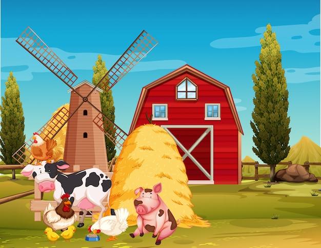 農場で家畜と農場のシーン