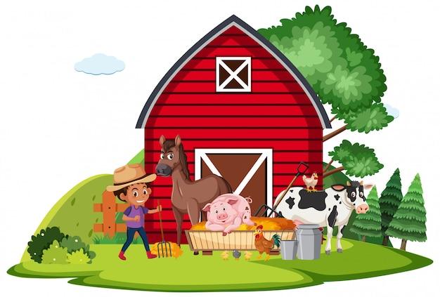 Ферма сцена с farmboy и много животных на ферме