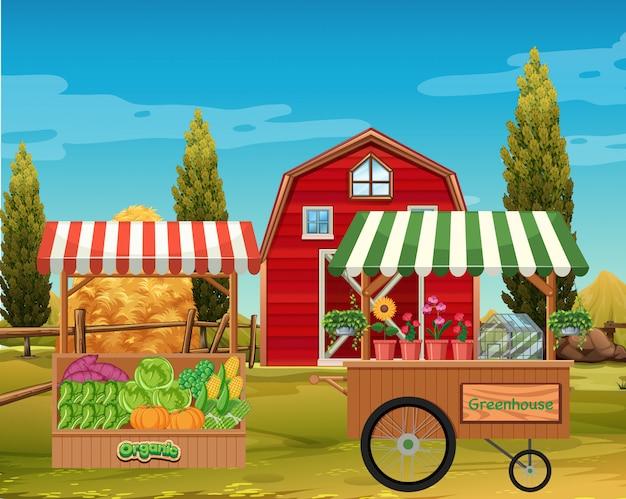農場で花と野菜の農場のシーン