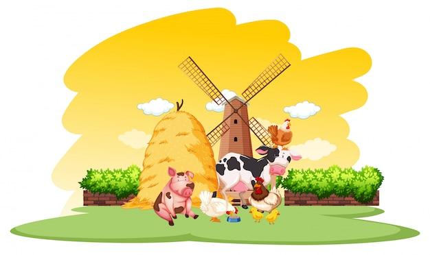 Сцена фермы с множеством животных на ферме