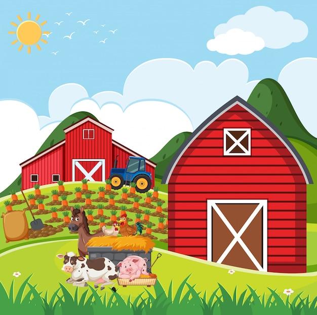 農場に多くの動物がいる農場のシーン