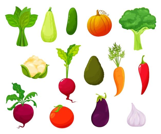 農場の野菜の収穫