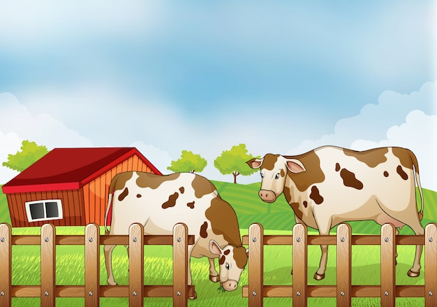 A farm with two cows inside the fence