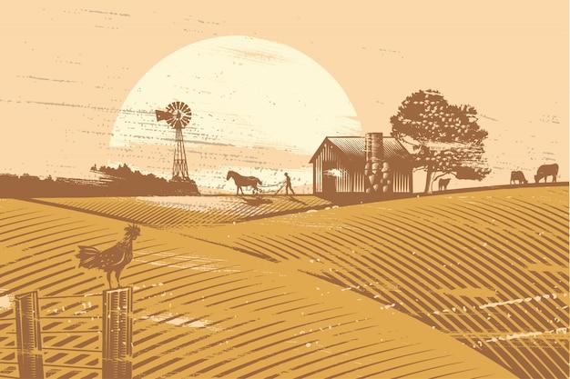 農家と日の出のフィールドで耕す馬