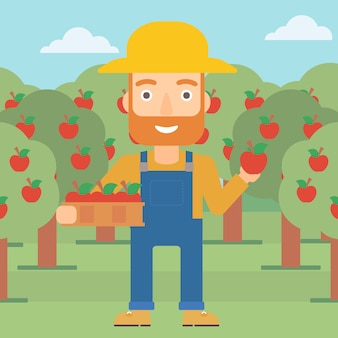 Farmer collecting apples