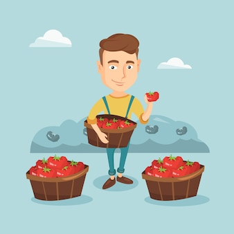 Farmer collecting tomatos vector illustration.