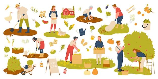 농부 사람들은 과일과 채소의 농장 정원 세트 농업 생산에서 일합니다