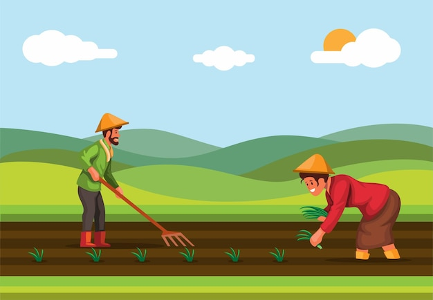 Farmer plant rice in rice field agriculture industry in asia scene illustration vector