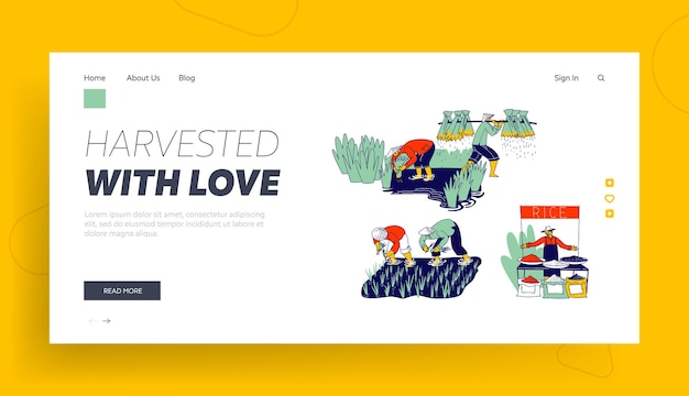 Farmers characters planting and grow rice in rainy season landing page template.