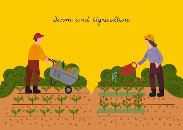 재배 현장 벡터 일러스트 디자인에서 일하는 농부 부부