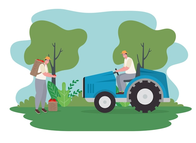 Farmers men with tractor