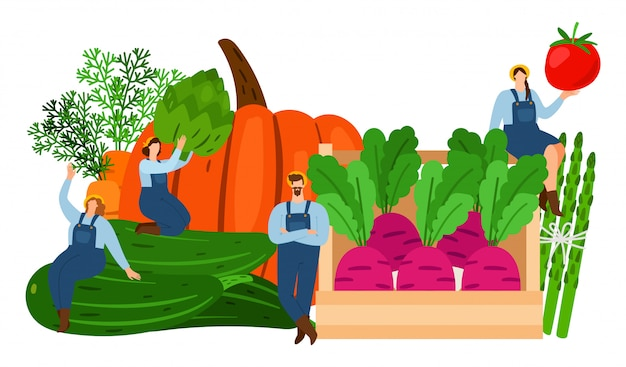 Farmers and vegetables. harvest time vector illustration.