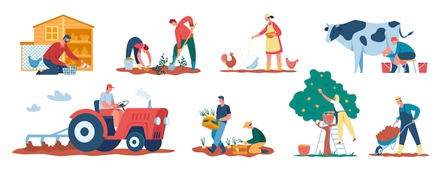 Farmers at work agricultural workers harvesting crops and caring for animals