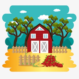 Farmhouse in the farm scene