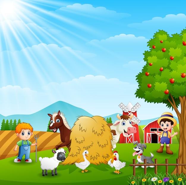動物との農場での農業活動