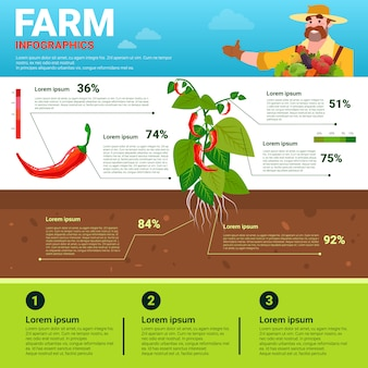 Farming infographics eco friendly organic natural vegetable growth farm production banner