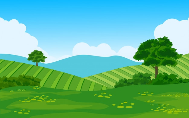 Farmland in countryside vector landscape
