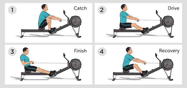 Fases of rowing exercice guide scheme image